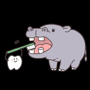 虫歯が減れば歯周病が増える現実。
